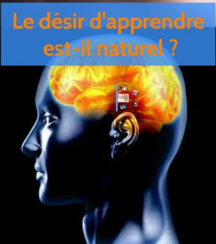 cerveau2.1.JPG
